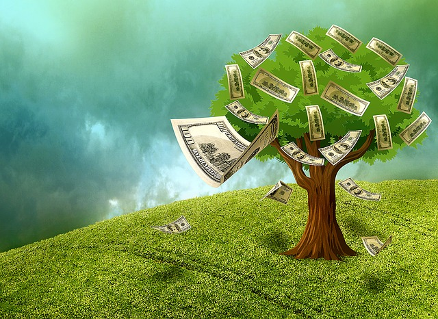 grow a money tree
