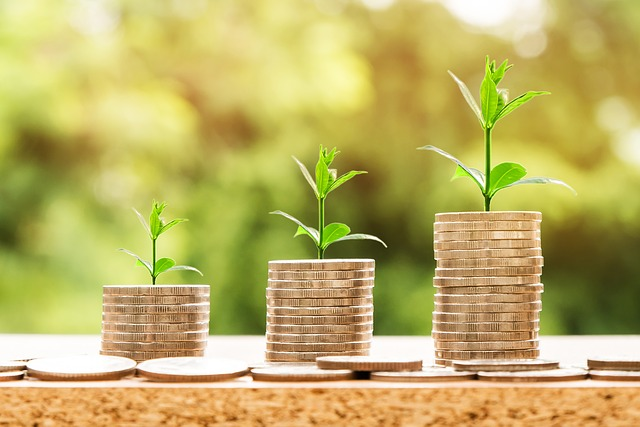 coins stacking higher and higher with plant behind each stack indicating growth of money
